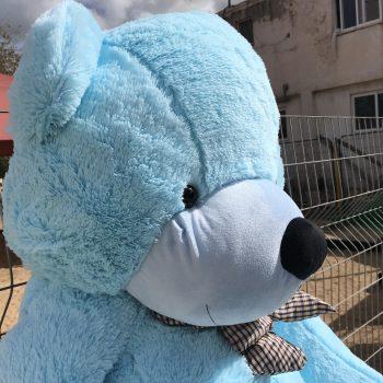 דובי-ענק-כחול-2-מטר-פנים